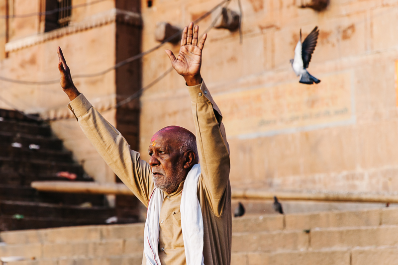 Wings in Varanasi-1