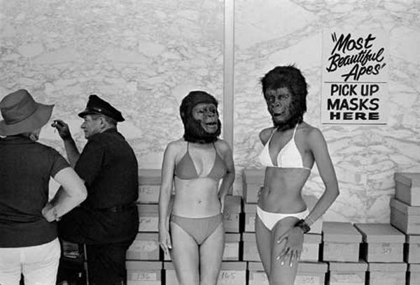 Winogrand Ape Masks